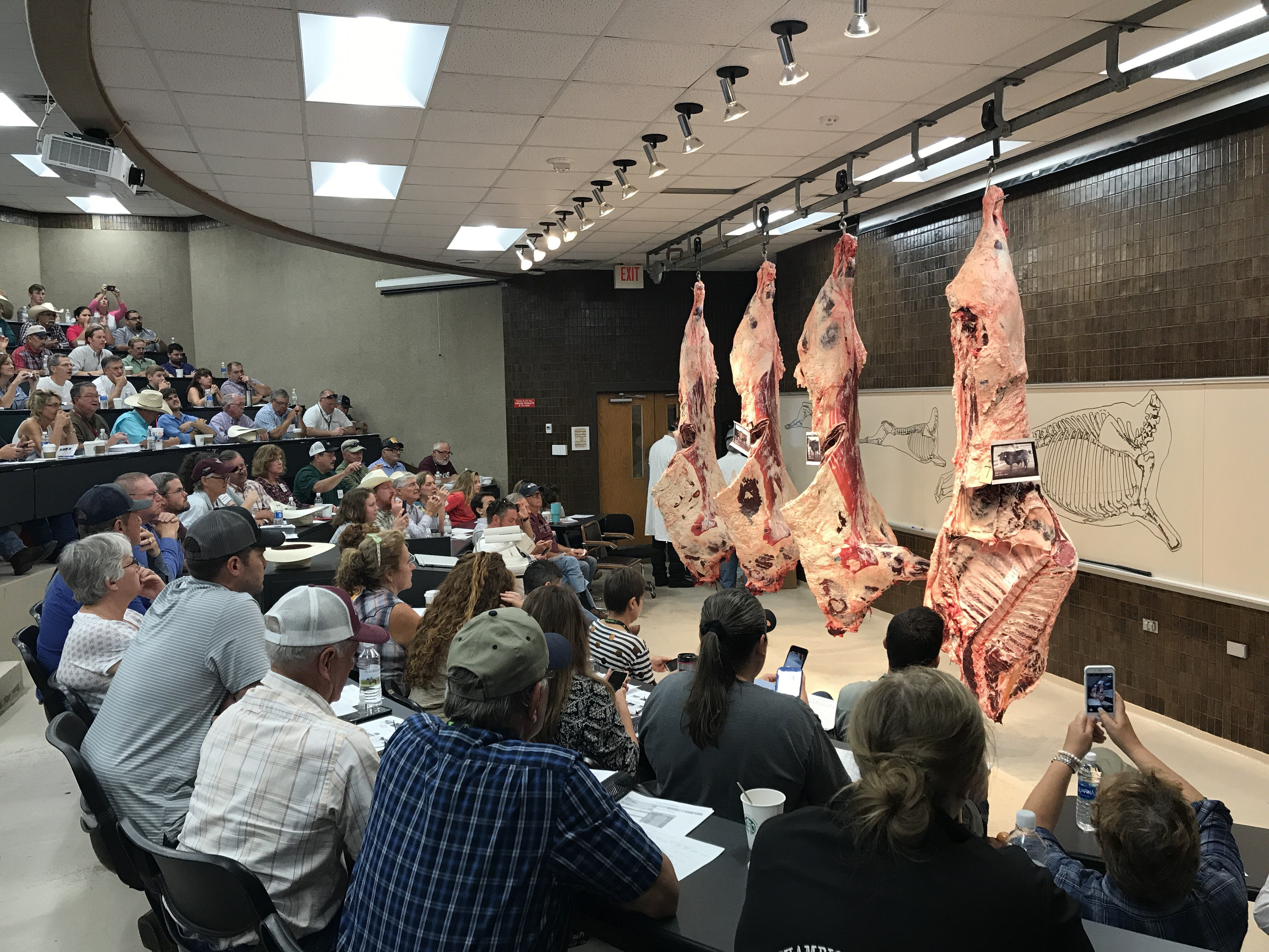 cattlemen course in College Station